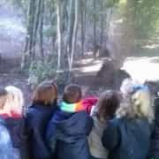 Nuestra primera visita al Zoo : Educación Infantil. 2014-15