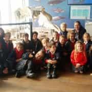 Visita al Museo Alborania de Aula del Mar. 2015-16